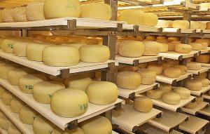 Käseproduktion Landhof